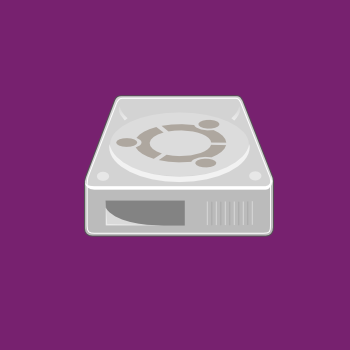 Manual Disk Partitioning Guide for Ubuntu Server Edition