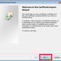 ie cert2 200x200 How to Filter HTTPS Traffic with Squid 3 on Ubuntu Server 13.10